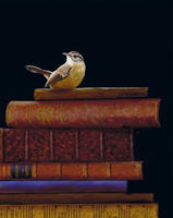 122-Carolina-Wren-Bird-Painting-Collectible-Books.jpg