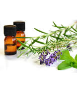 ESSENTIAL OILS   BACK TO SCHOOL WELLNESS 2019.jpg